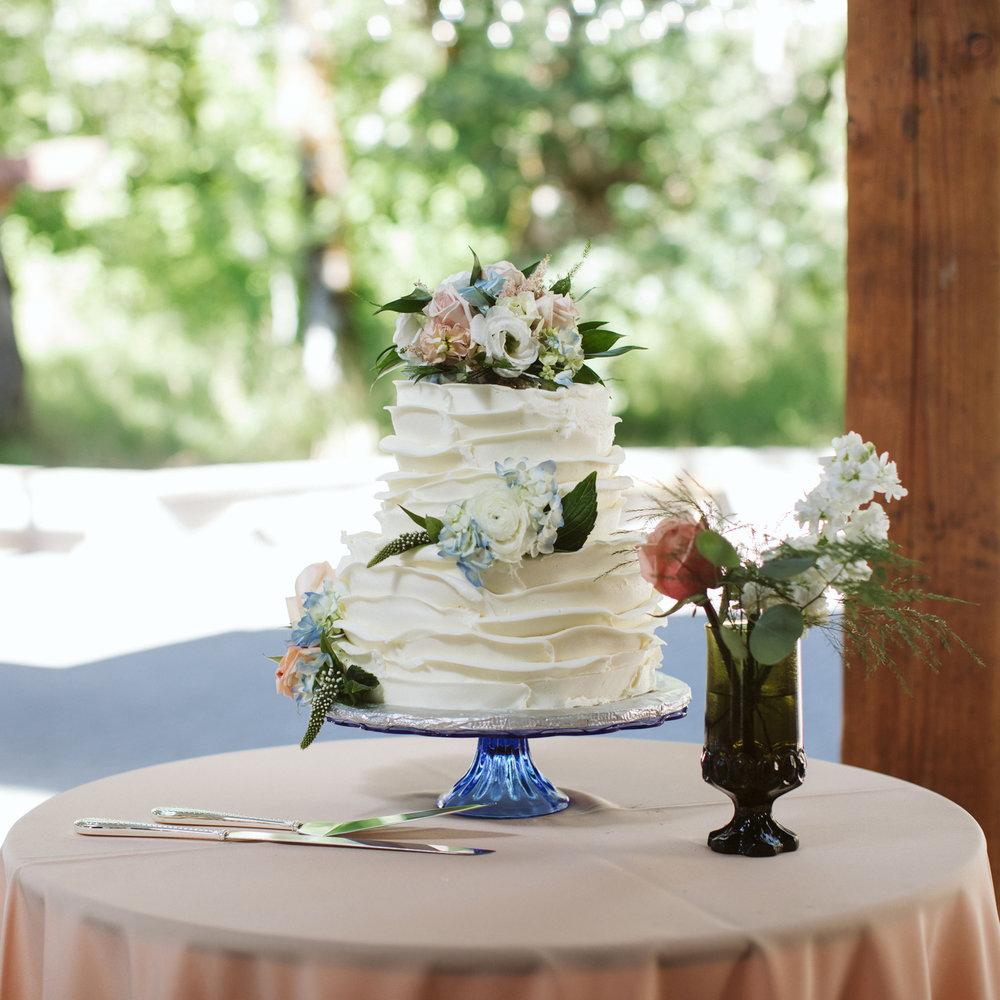 061-daronjackson-rachel-michael-wedding-mtpisgah.jpg