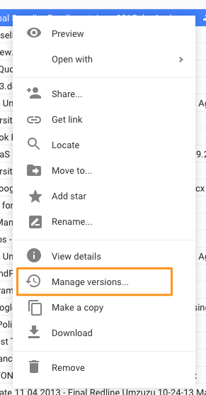 Google Drive Versions.png