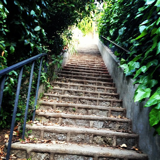 Secret Stairs Of Hollywoodland U2014 Branche