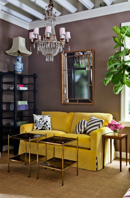 I spy a  fiddle leaf fig !