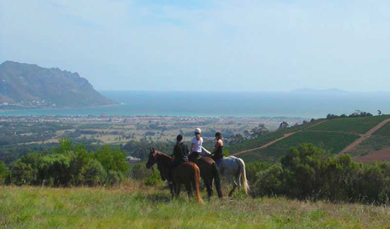 Lalapanzi-Lodge-Horse-Riding.jpg