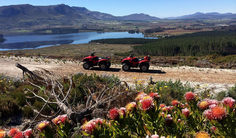 Lalapanzi-Lodge-Quad-Biking.jpg