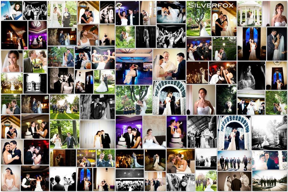 Silverfox Collage 2014 xs.jpg