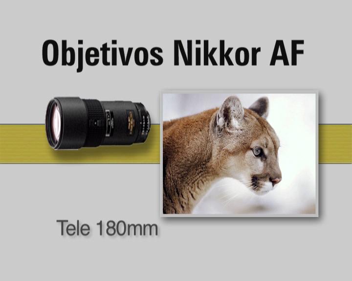 nikon_videos_formacion_054.jpg