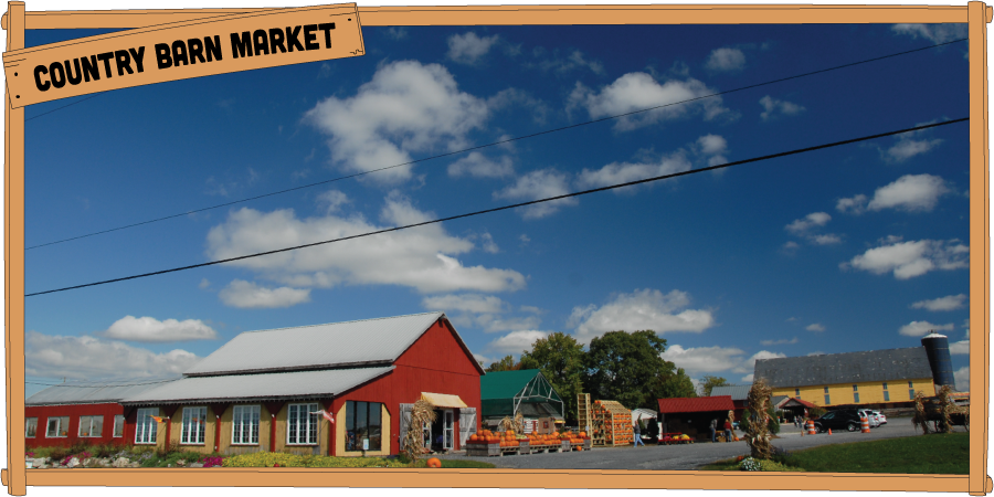 900x450countrybarnmarket7.png