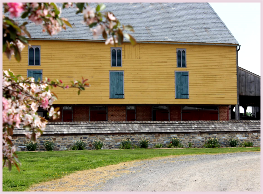 unique wedding venues northern new jersey%0A The Country Barn is a diversified     acre farm located in beautiful  Lancaster County  Pennsylvania  Our guests step out of the high tech world  and into a