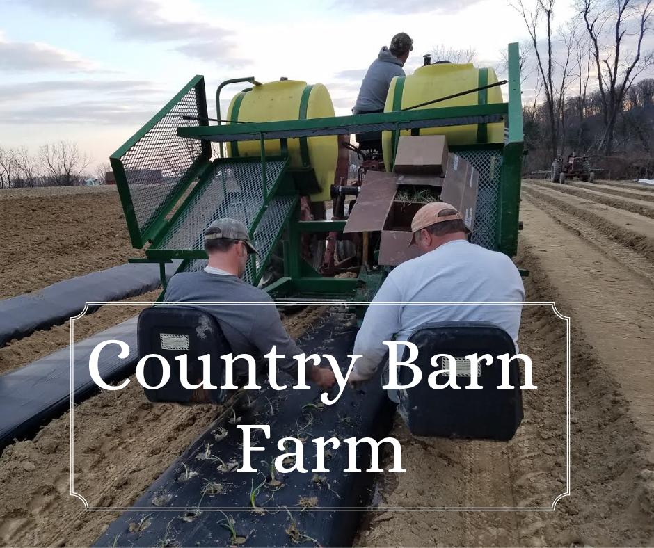 Copy of Country Barn Farm