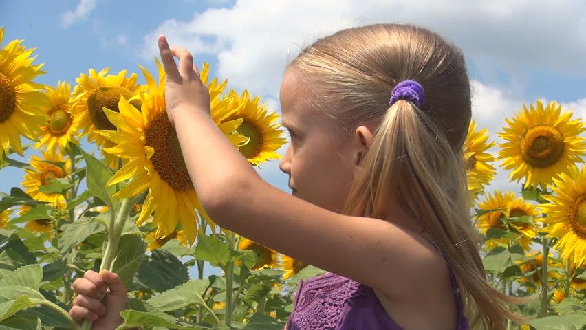 girl in sunflowers.jpg