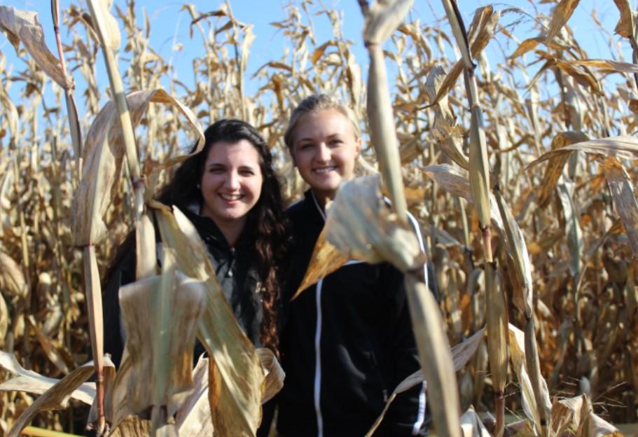 girls corn maze.jpg