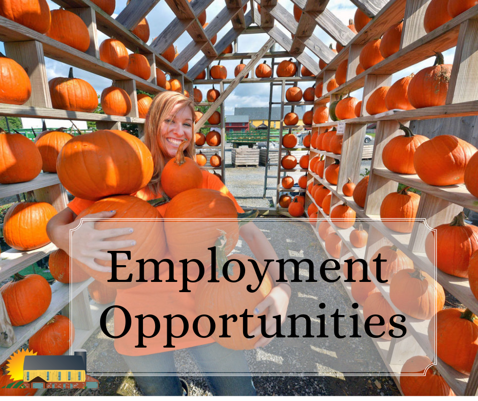 Employment Opportunities at Country Barn