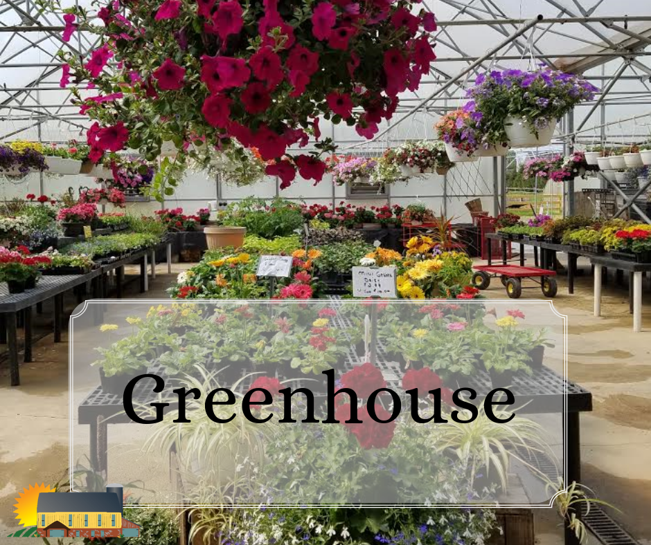 Country Barn Greenhouse