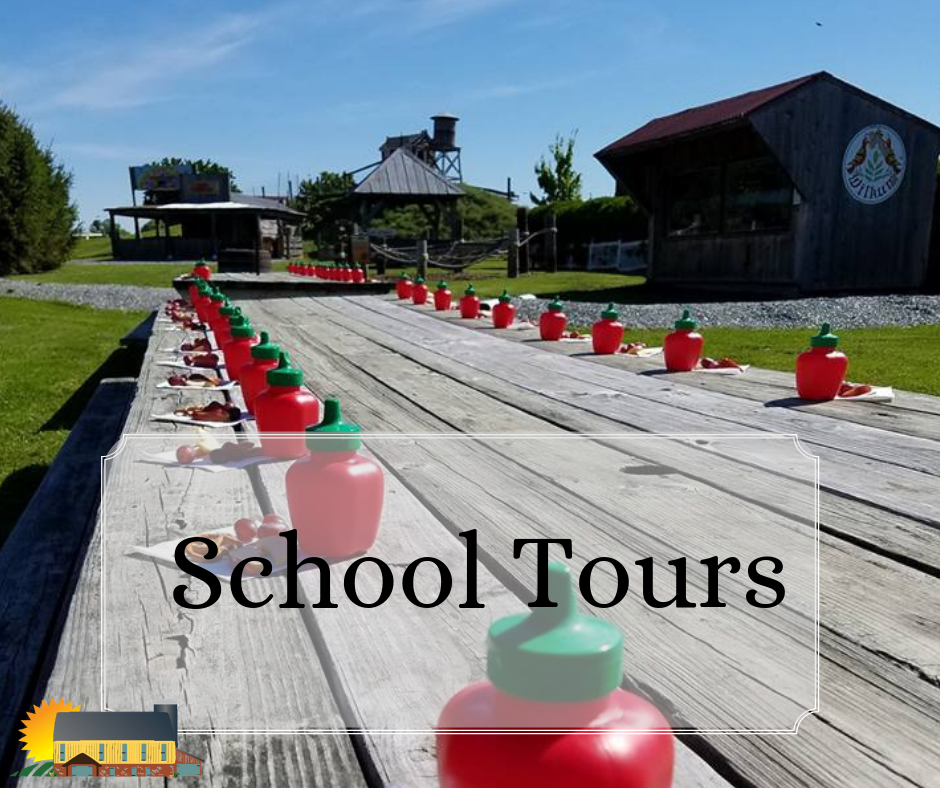 School Tours at Barnyard Kingdom