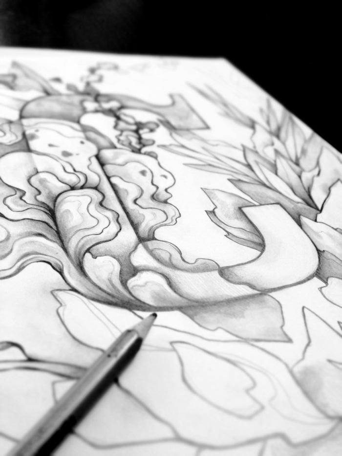 C_drawing_ZSO.jpg