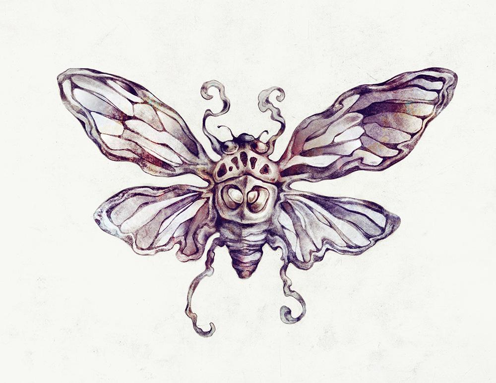 Cicada_02.jpg
