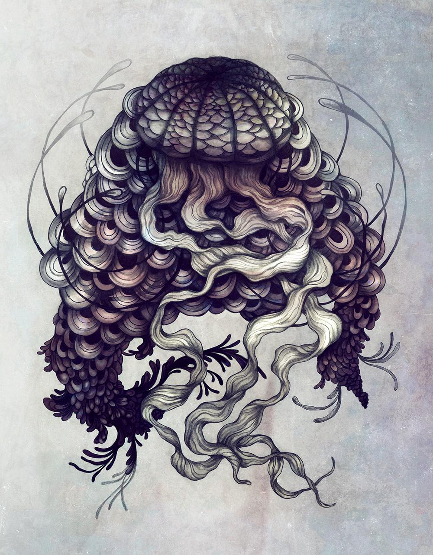 Jellyfish_ZSO.jpg