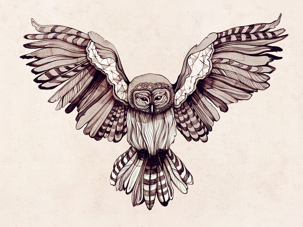 OWL_ZSO.jpg