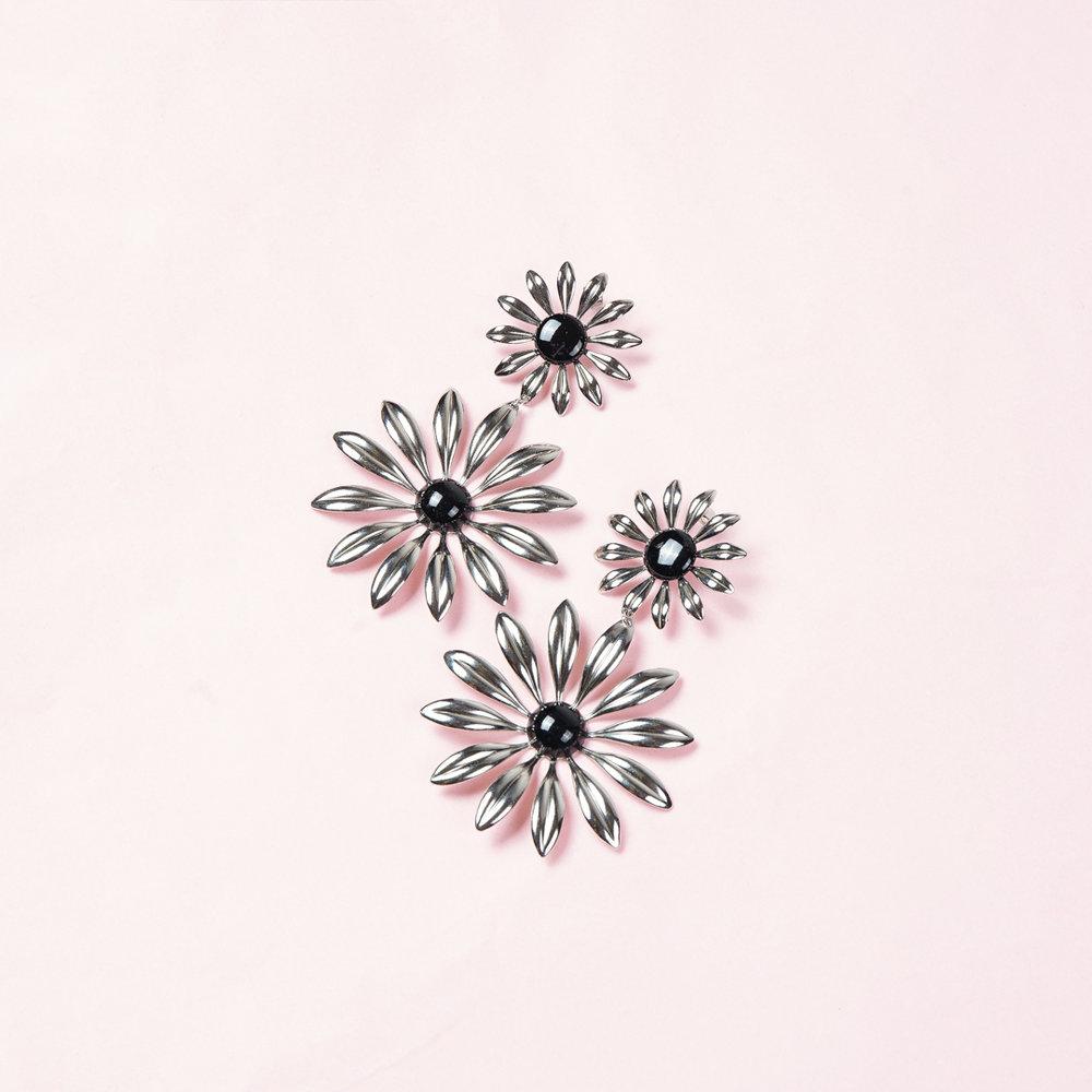 Silver_Daisy.jpg