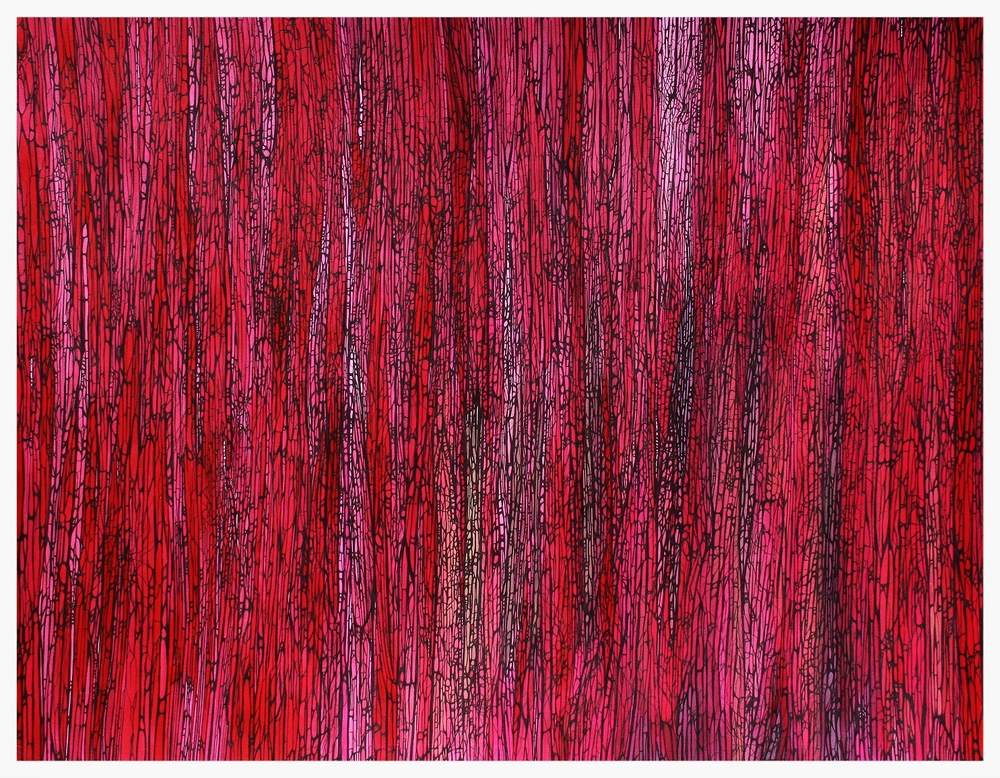 """""""A Flicker of Light Through a Forest of Red"""" ©ANTHONY WIGGLESWORTH 2015"""