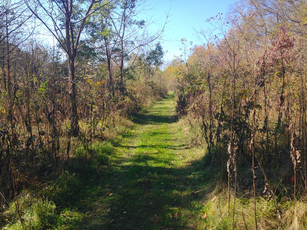 Trail at Banshee Reeks Nature Preserve