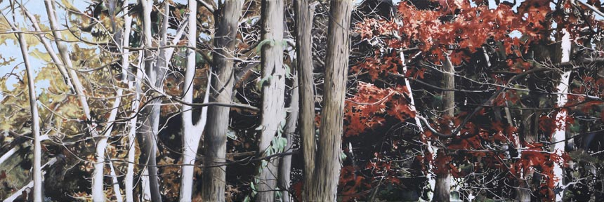 "Southbury Trees No. 9   Oil on canvas, 24"" x 72"", 2012"