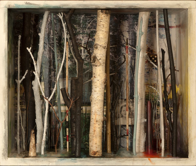 "Southbury Trees No. 10   Mixed media and found objects, 10-11/16"" x 12-5/8"" x 6-1/16"", 2013"
