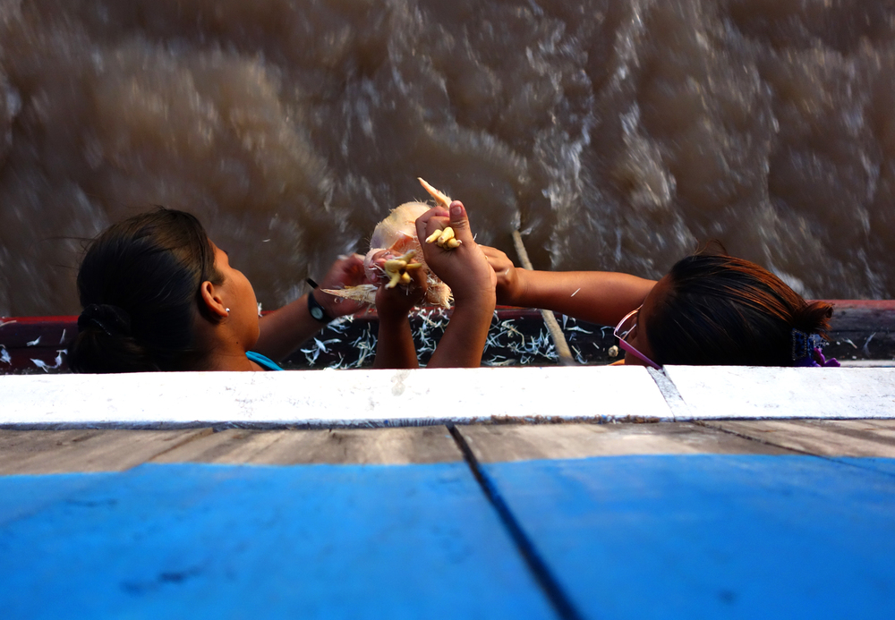 Women plucking a chicken off the back of the river boat