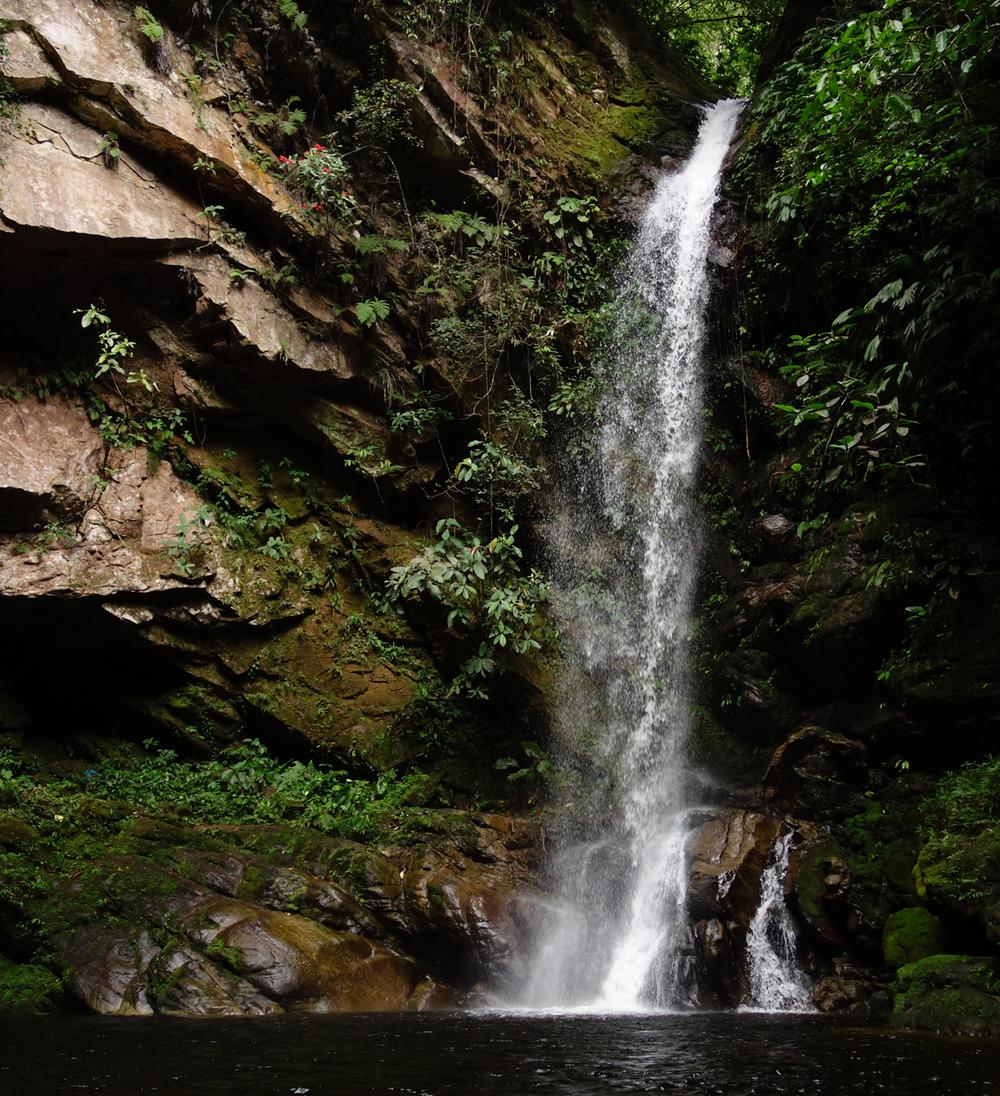 Huacamaillo Waterfall - San Antonio de Cumbaza, Peru