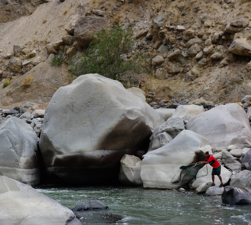 Trout fishing in Colca River