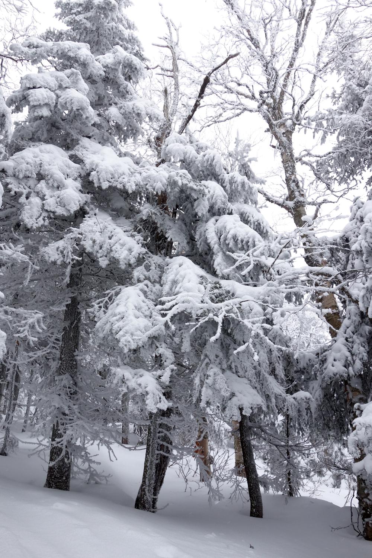 Bolton Vermont