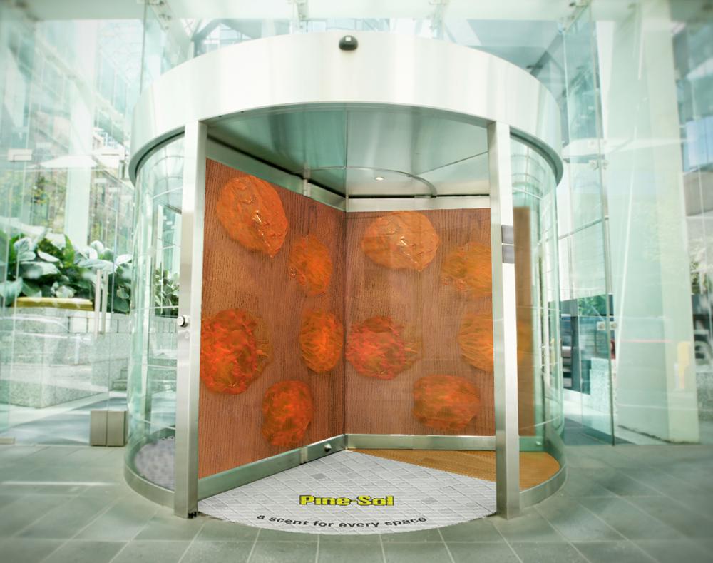 Organes1.jpg