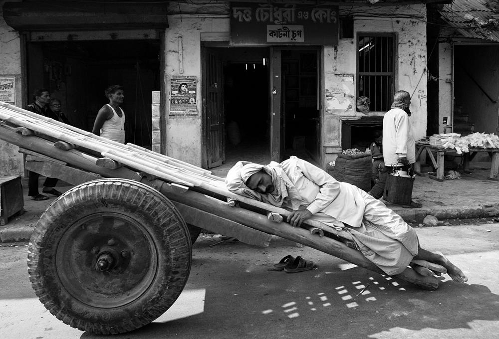 asleep on cart.jpg