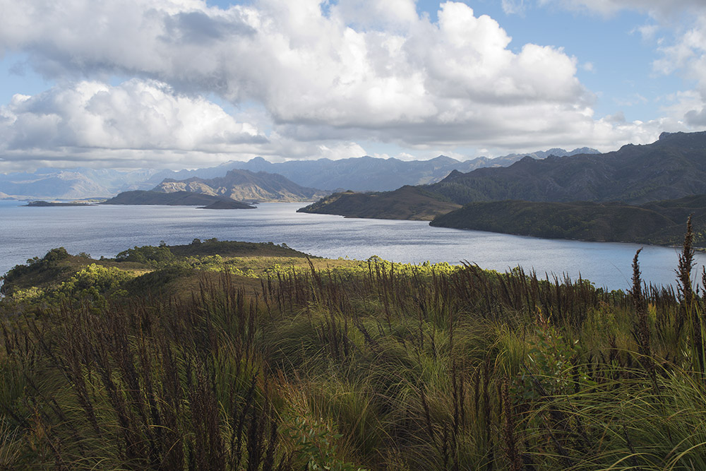 lake pedder and grassland 3028.jpg