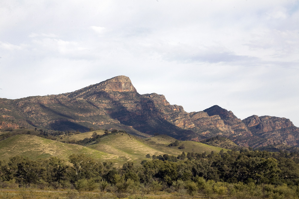 flinders ranges 1704.jpg
