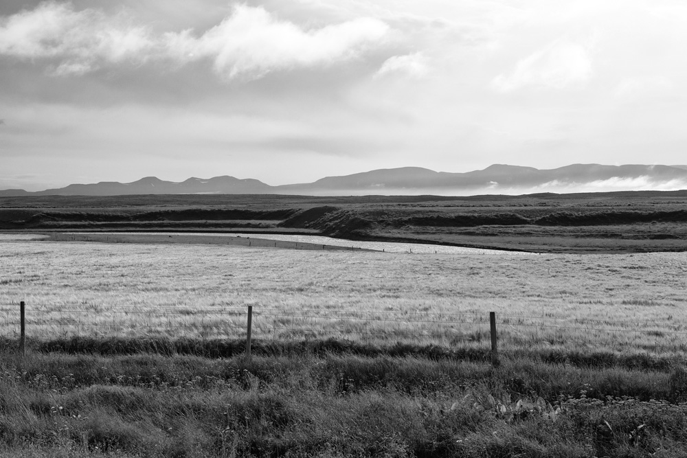 iceland fenced field 3109.jpg