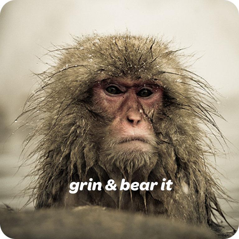 Grin&BearIt.jpg