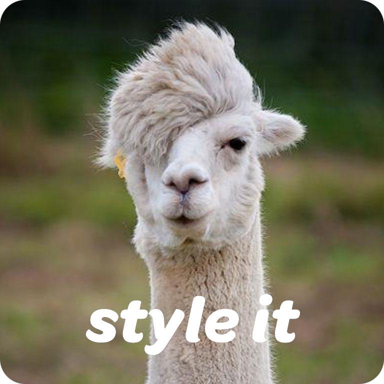 StyleIt.jpg