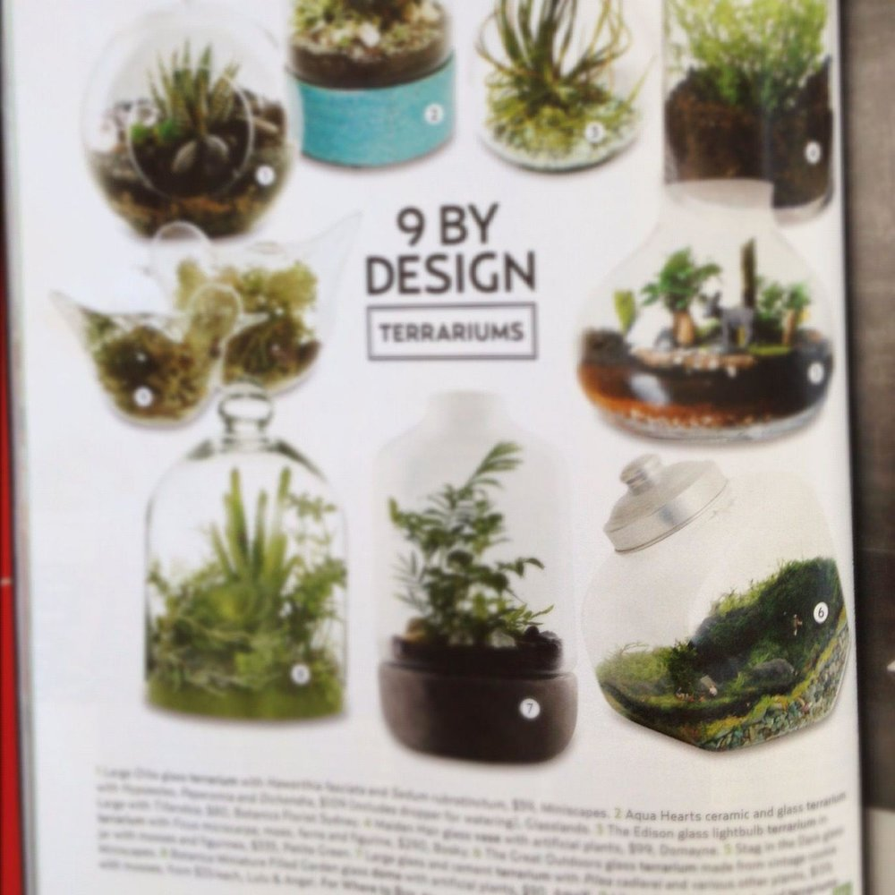 House and Garden Magazine Feb 2013
