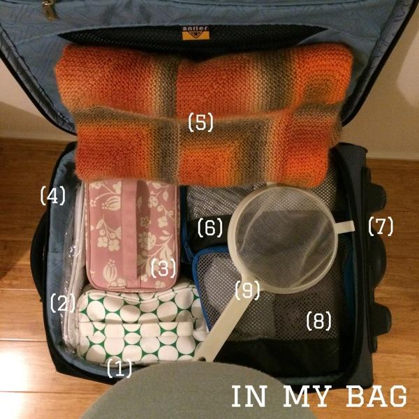 Day Nine: In my bag