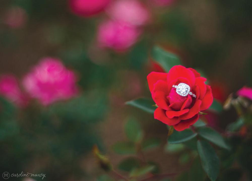 2014_12_05_MichelleSteve_Engaged_blog8.jpg