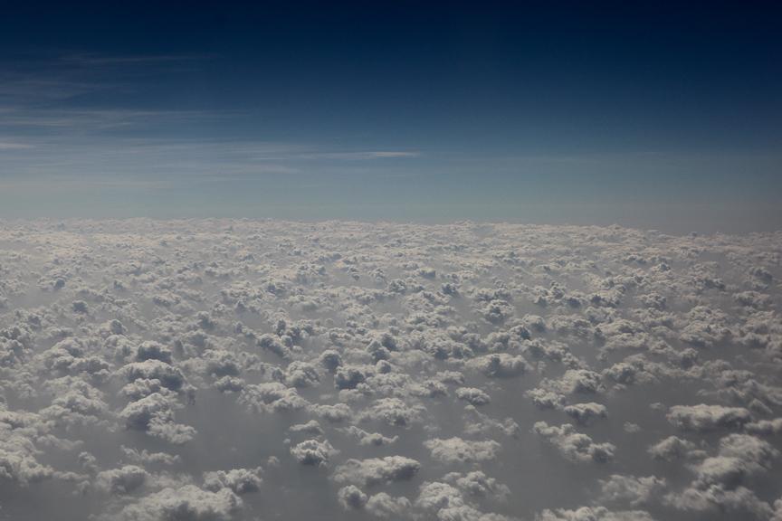 India2012WEB-647.jpg
