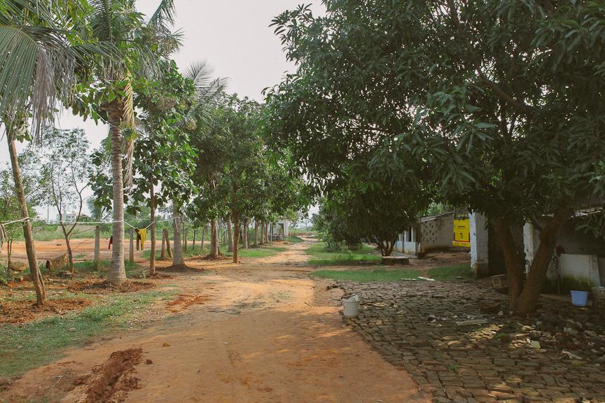 India2012WEB-385.jpg