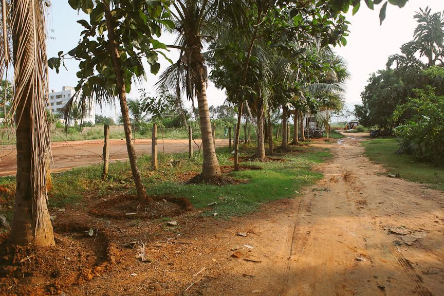 India2012WEB-426.jpg