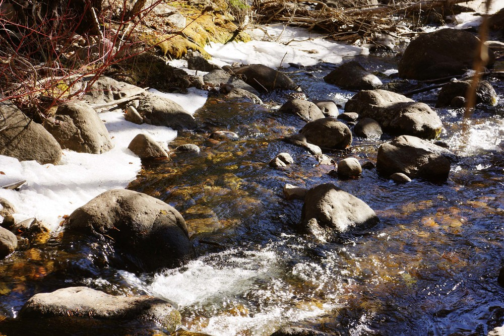 n. crestone creek as it looked last week. we'll be walking up again in a little while.....
