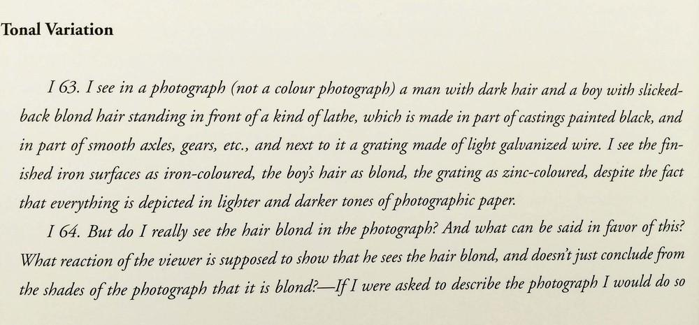site-9-28-14 wittgenstein on color.jpg