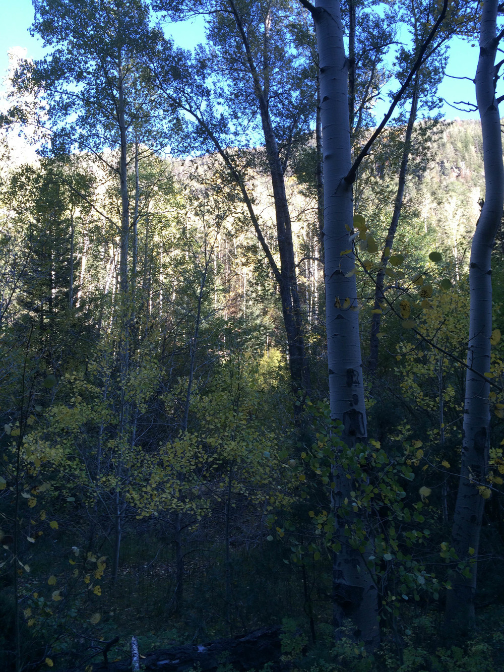 10-2-14 n.crestone trail 1-17-9.jpg