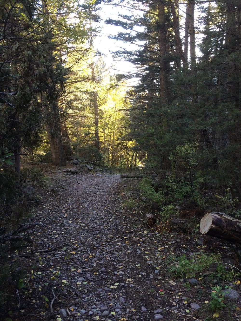 10-2-14 n.crestone trail 1-17-10.jpg