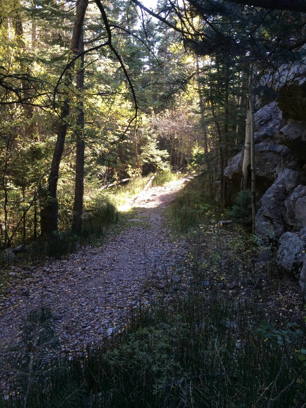 10-2-14 n.crestone trail 1-17-11.jpg