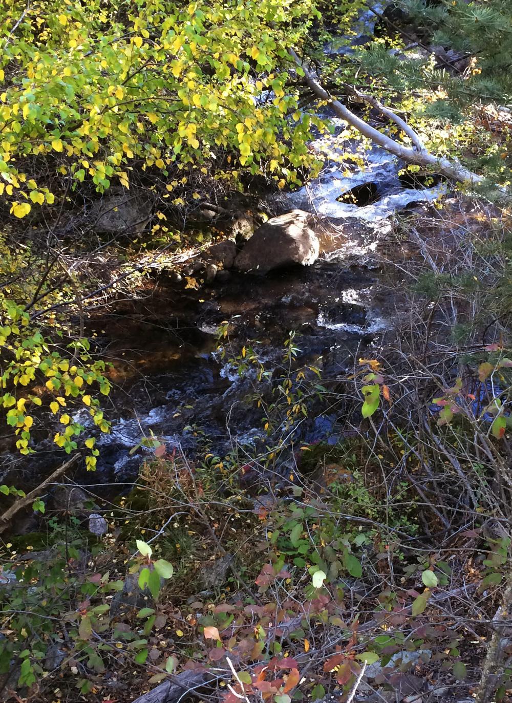 10-2-14 n.crestone trail 1-17-5.jpg