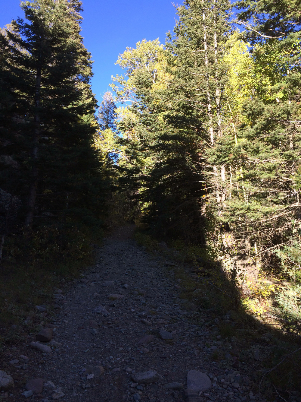 10-2-14 n.crestone trail 1-17-6.jpg