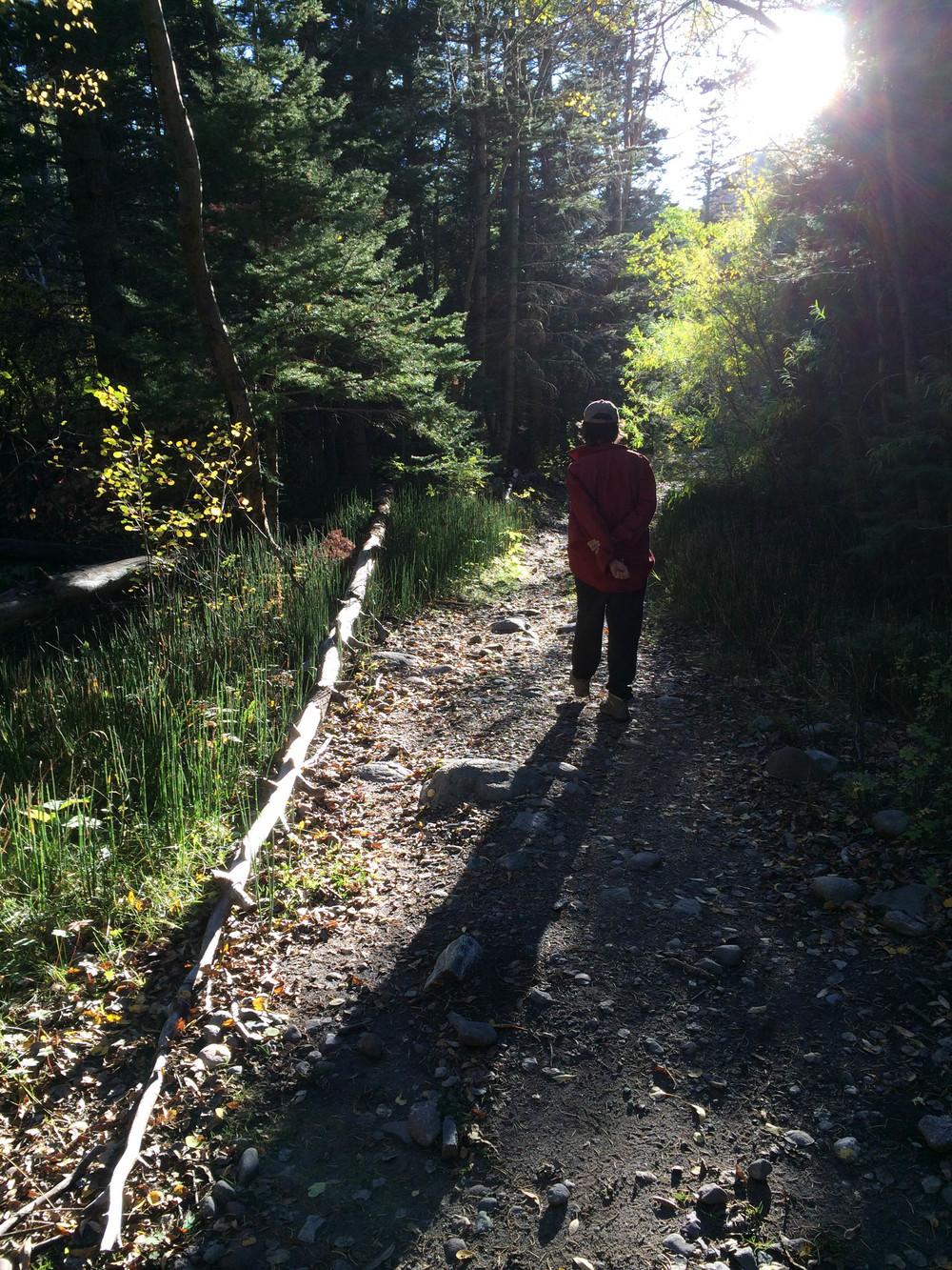 10-2-14 n.crestone trail 1-17-12.jpg